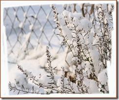 Schnee2013_3