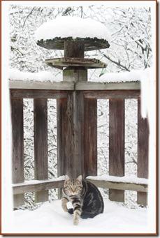 Schnee2013_4
